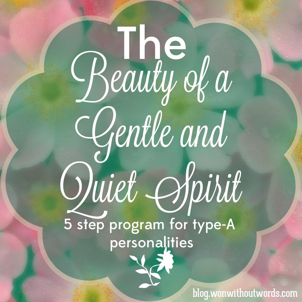 quiet spirit type A